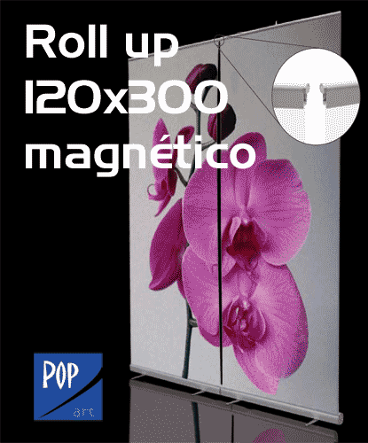 RollUp-120x300mag-ico